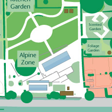 A closer look at the 'Alpine Zone' area of the garden.